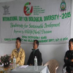 International Day for Biological Diversity North District 2015